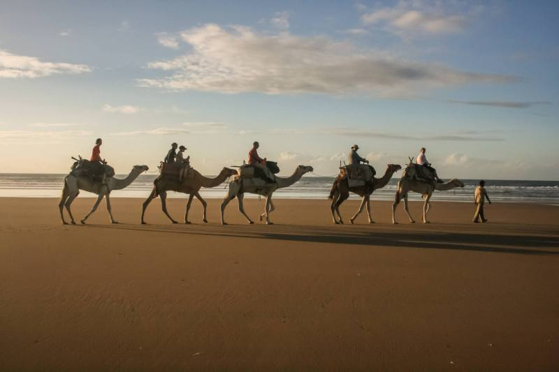 Five Camels on Beach, riders on board, guide leading the train at front