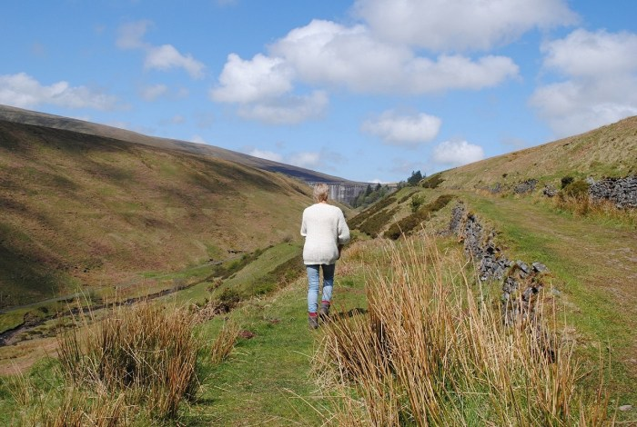 Walk and wonder - Black Mountains - Being At The Cottage