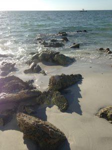 seashore rocks