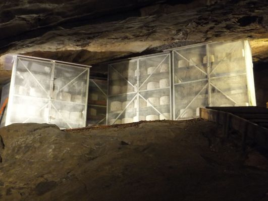 Cheddar cheese maturing in Gough's Cave