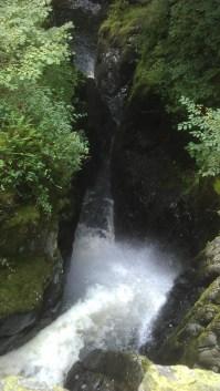 IMAG3307