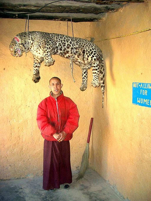 Komic village, Tangyud monastery