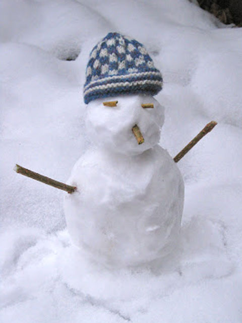 Snowtwig wearing a blue and white Fair Isle hat