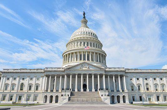 Reasons why we need big government regulation, bandwagon