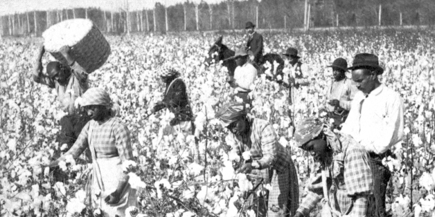 Slaves picking cotton