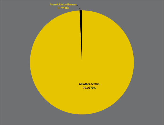 gun-homicide-vs-all-other-deaths-pie-chart