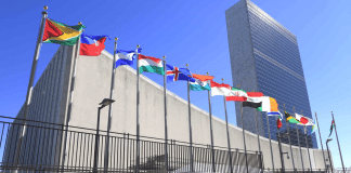 U.N. government