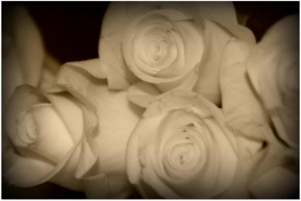 Love spirals...