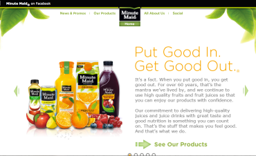 Minute Maid Brand Strategy