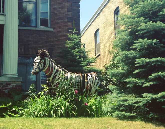 minneapolis-zebra-sculpture