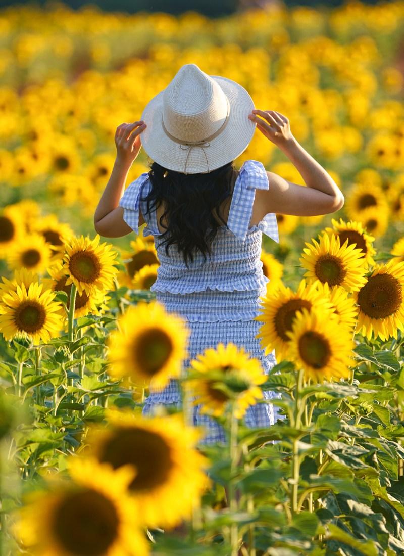 Outfit Inspo: Gingham Blue Summer Dress / Sunflower Field Part 2