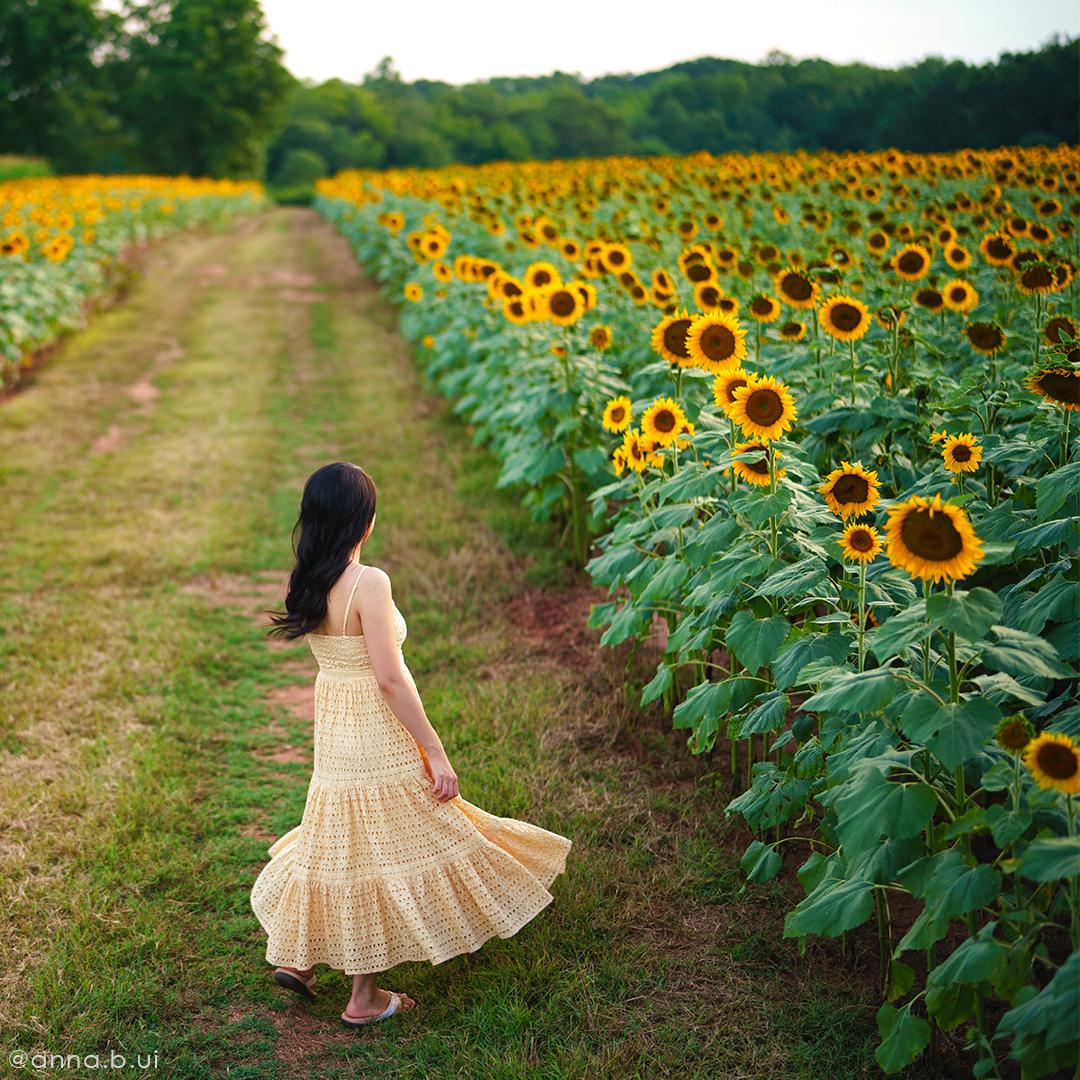 BeInspireful - Sunny Sunflower Field Yellow Dress 8