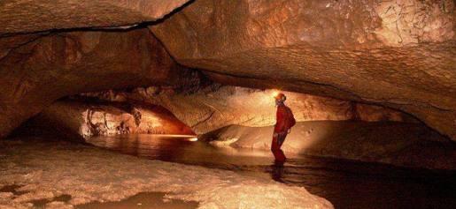 http://greensavers.sapo.pt/2014/08/15/terceira-maior-gruta-de-portugal-ja-pode-ser-visitada/