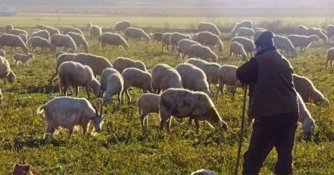 Segunda edição da escola de pastores arranca em junho