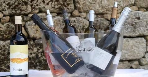 Concurso de vinhos da Beira Interior com 83 vinhos de 31 produtores