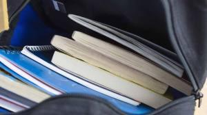 Alunos sem todos os manuais escolares por atrasos nas editoras