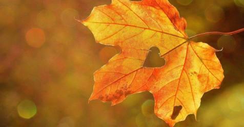Outono chega hoje com vento intenso nas terras altas
