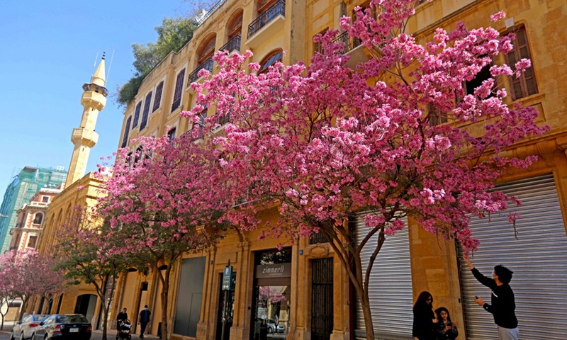 It's spring in Beirut!