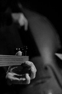 """""""Silent Wave"""" Concert"""