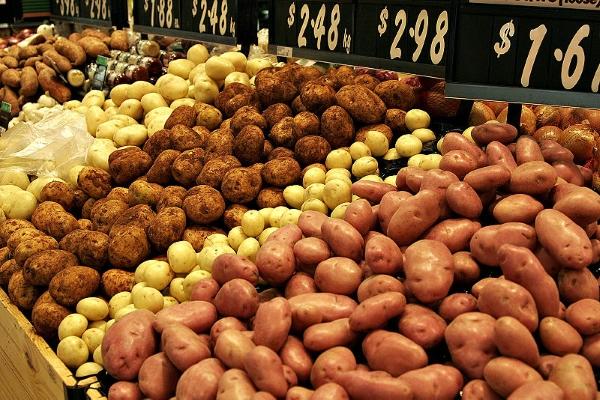 تجمع مزارعي البقاع : لتوفير اعتمادات بالدولار لشراء بذار البطاطا