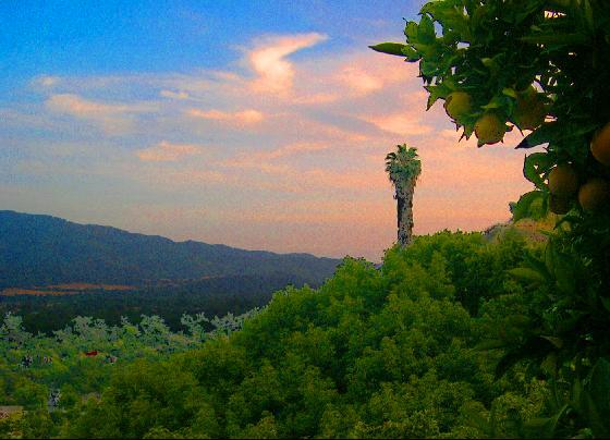 1467338-ojai_sunset_from_shelf_road_copyright_2004-ojai.jpg