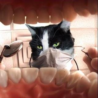 dentisthomer.jpg