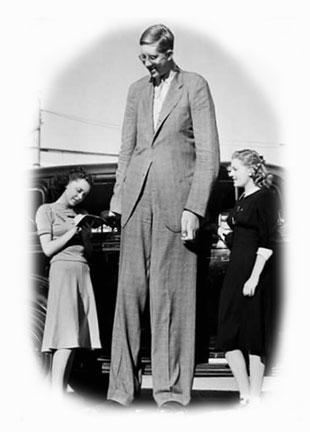 tall_man.jpg