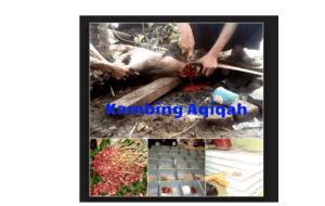 layanan kambing akikah bekasi 2016