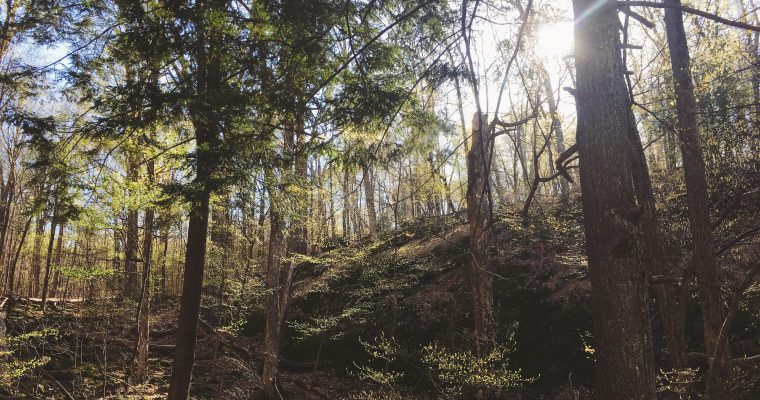 Climb Every Mountain (Barefoot)