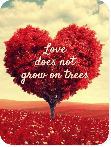 "Love does not grown on trees or brought in the market, but if one wants to be ""LOVED"" one must first know how to give (unconditional)LOVE.."" Kabir quote be kitschig blog"