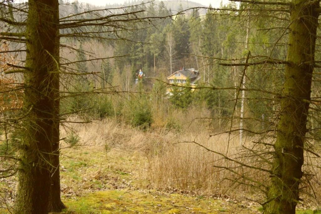 Märchenwald Saalburg in the woods