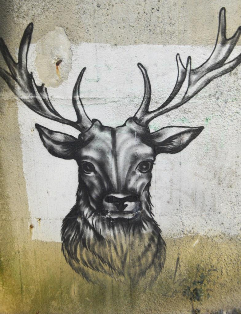 street art postcards from Berlin #21 bekitschig.blog Deer Elch im Park Humboldhain