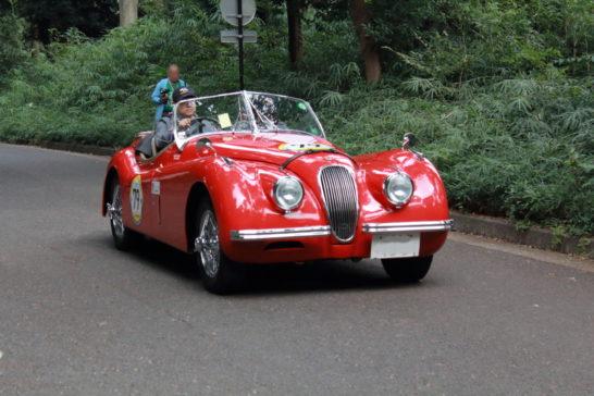 1954JAGUAR XK120
