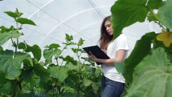 young girl agronomist