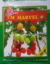 omat TM Marvel, Tomat F1 TM Marvel, TM Marvel F1 Tani Murni, Jual Bibit TM Marvel, Beli Benih F1 TM Marvel, Tomat Buah TM Marvel, Buah Tomat TM Marvel, Belanja Tani, Tani Murni Indonesia, TM Seeds
