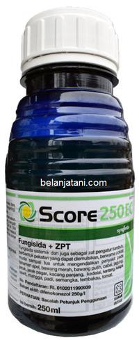 Fungisida Score, Fungisida Score 250 EC, Jual Fungisida Score, Fungisida Sistemik Fungisida Score, Syngenta, Syngenta Indonesia, Belanja Tani