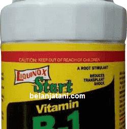 Liquinox Start, ZPT Liquinox Start, Liquinox Start Vitamin B1, Hormon Liquinox Start, Manfaat Liquinox Start Vitamin B1, Cara Pemakaian Liquinox Start, ZPT Adalah, Belanja Tani