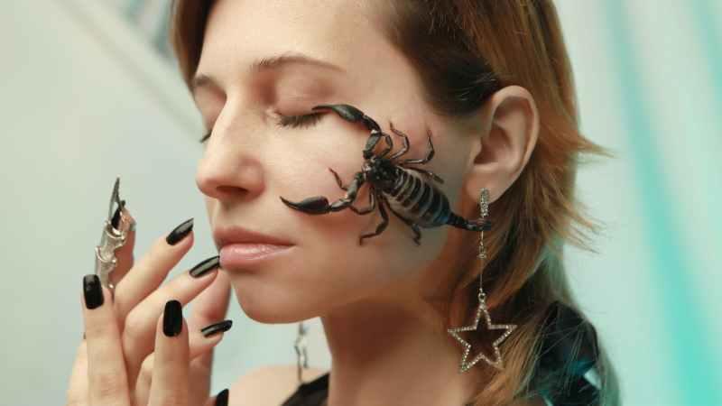 Signo escorpião: 13 coisas para saber sobre Escorpião