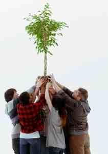 team-building initiative