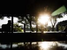 Sava Sunset