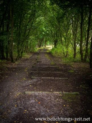 Der Weg nach unten