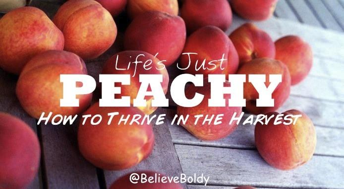 BB Peach cover