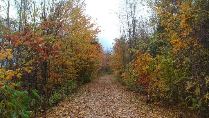 BB Running trail