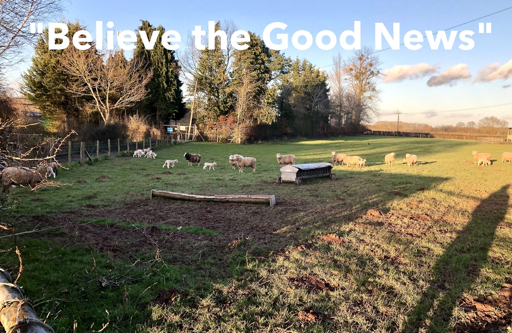 Welcome to Believe the Good News