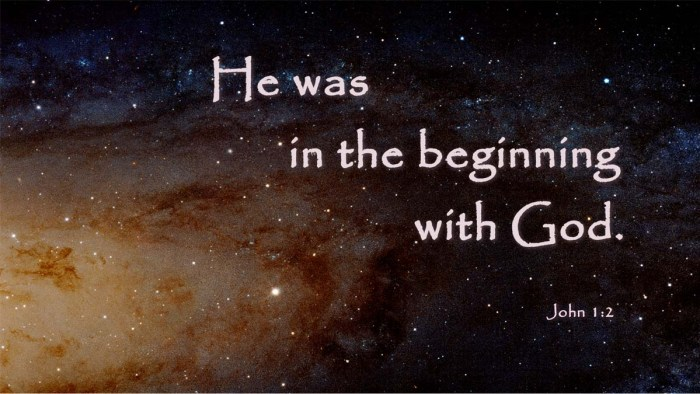 Christians believe Jesus was in the beginning with God