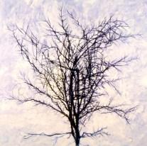 thornbush: pigment and acrylic on canvas