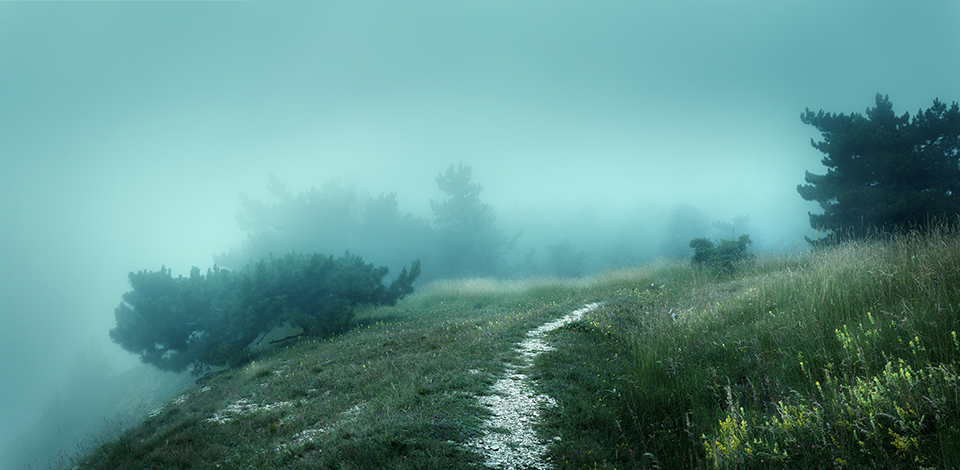 The Foggy Path