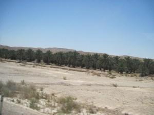 Eilat 18 - 22 may 2014 095