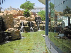 Eilat 18 - 22 may 2014 320