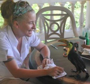 Keel-billed-toucan